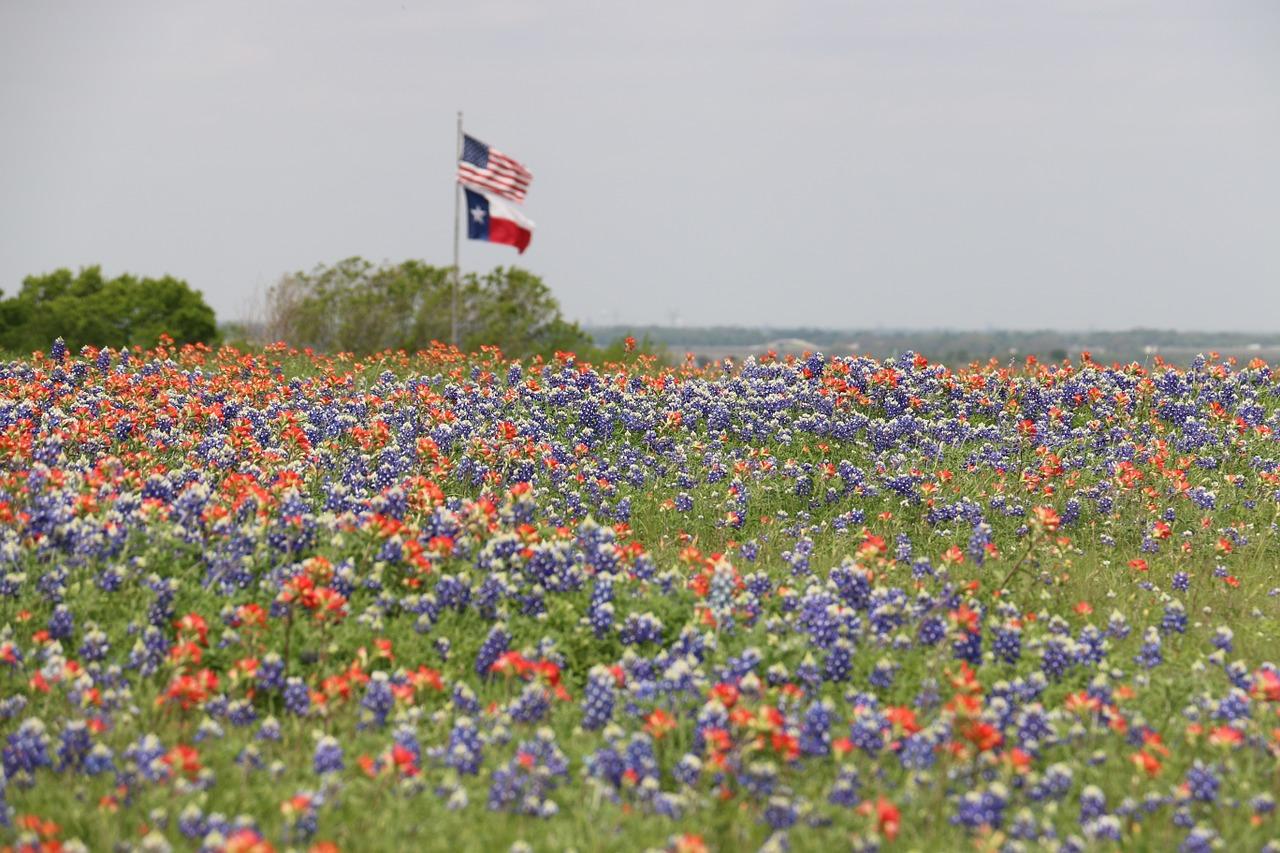 Texas Mortgage Broker